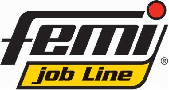 Logo Femi Job Line